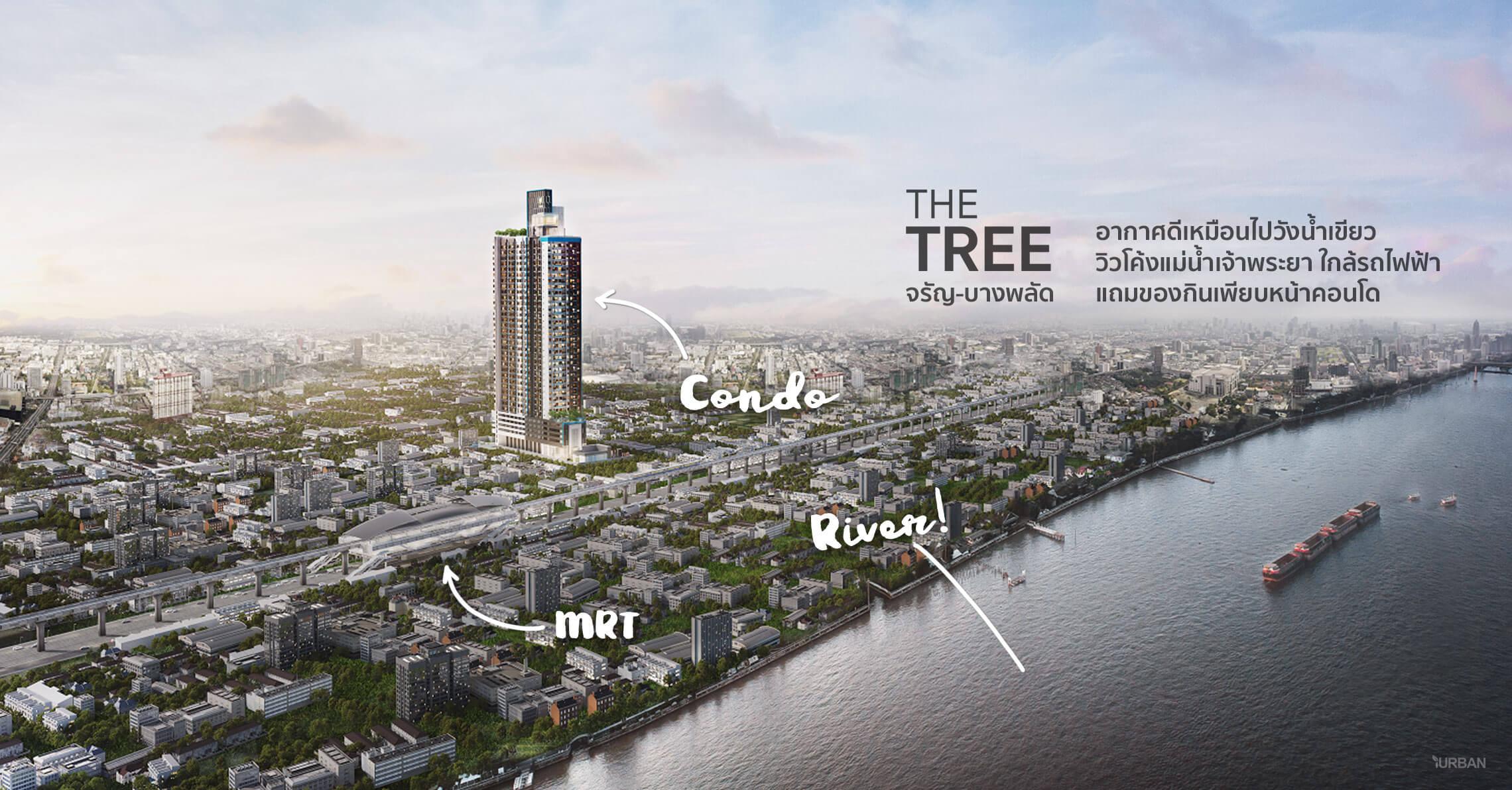 The Tree จรัญ-บางพลัด คอนโดมีระบบอากาศดี ติดรถไฟฟ้าแต่ได้วิวสวยโค้งแม่น้ำเจ้าพระยา 4 - LIVING