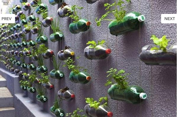 รีไซเคิลของใช้ ให้เป็นกระถางปลูกพืชผักสวนครัว