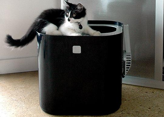 Modkat ห้องน้ำของน้องแมว 13 - Modkat