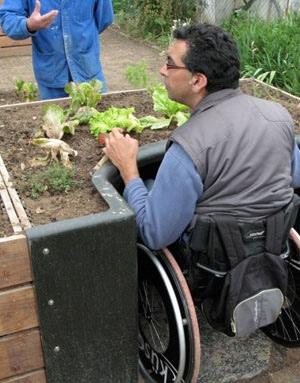 Terraform สวนบำบัดสำหรับมนุษย์ล้อ 2 - garden for handycap