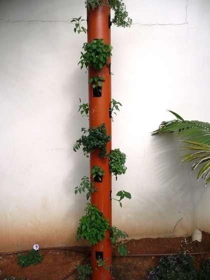 D.I.Y.สวนแนวตั้ง จากท่อ PVC 13 -