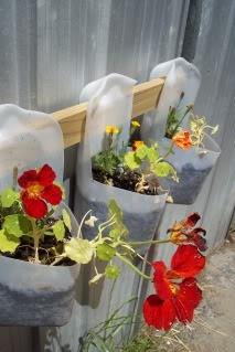 สวนแขวนจากขวดนมพลาสติกใช้แล้ว 13 - Montessori Preschool