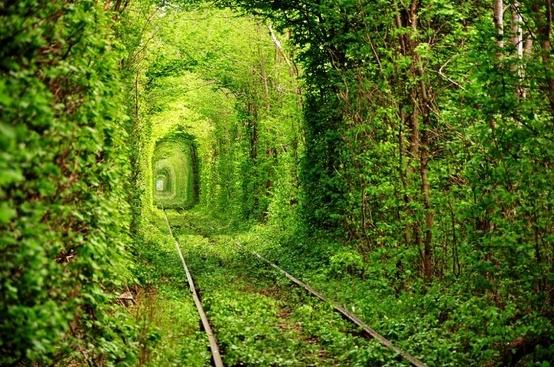 อุโมงค์สีเขียว.. อุโมงค์แห่งรัก.. เส้นทางในธรรมชาติสำหรับรถไฟ และคนรักกัน..ที่สุดแสนโรแมนติก