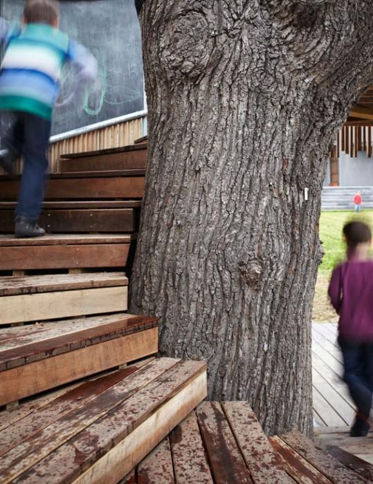 บ้านต้นไม้..ส่งเสริม
