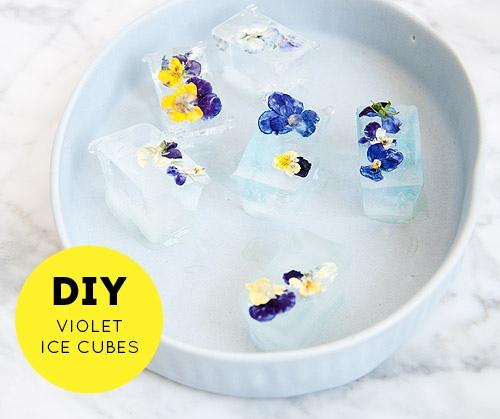 DIY ดอกไม้ในน้ำแข็ง..แค่เห็นก็หายร้อน 13 - DIY