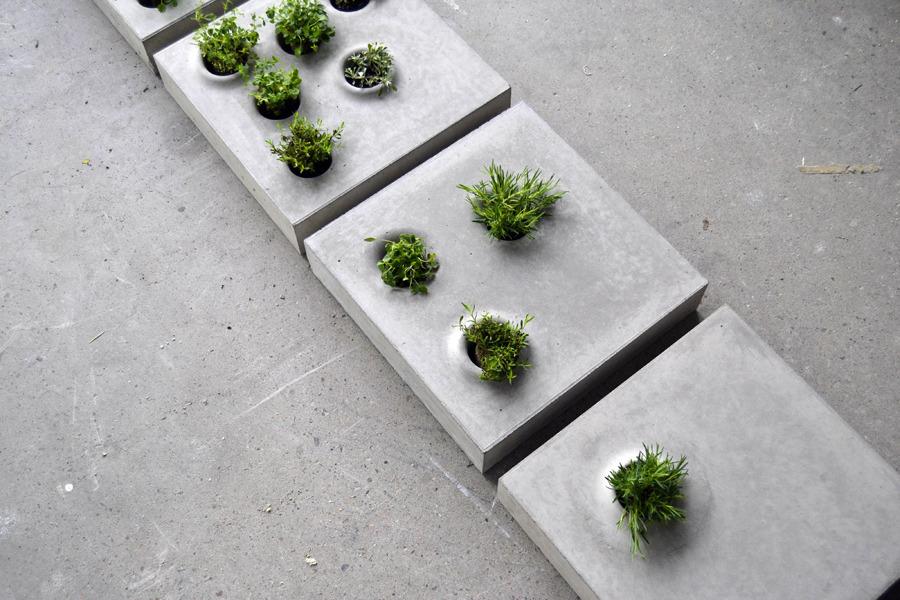 Grey To Green แผ่นกระเบื้องคอนกรีตปูพื้นทางเดินให้สามารถปลูกต้นไม้ต้นเล็กๆในหลุมปลูกได้  2 - Caroline Brahme