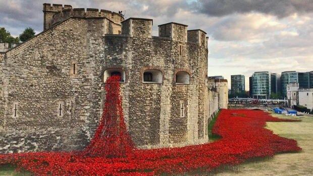 Installation Art ..ดอกป๊อปปี้ไหลนองเพื่อรำลึกถึงผู้เสียชีวิตในสงครามโลกครั้งที่1