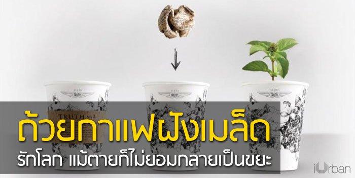 ถ้วยกาแฟรักโลก รีไซเคิลขยะเป็นกระถางต้นไม้จากเมล็ดพืชฝังอยู่ 13 - กระถางต้นไม้