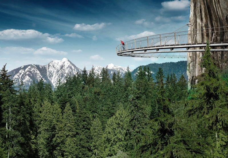 Vancouver's Capilano Suspension Bridge Park กิจกรรมสำรวจธรรมชาติและชมวิวจากบนยอดต้นไม้ 2 - Rainforest