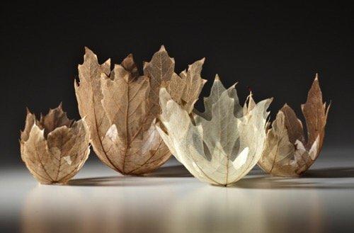 """ดีไซน์งดงามไร้กาลเวลา """"ชามใบไม้"""" สุดยอดไอเดียออกแบบโดย Kay Sekimachi 13 - Japan"""