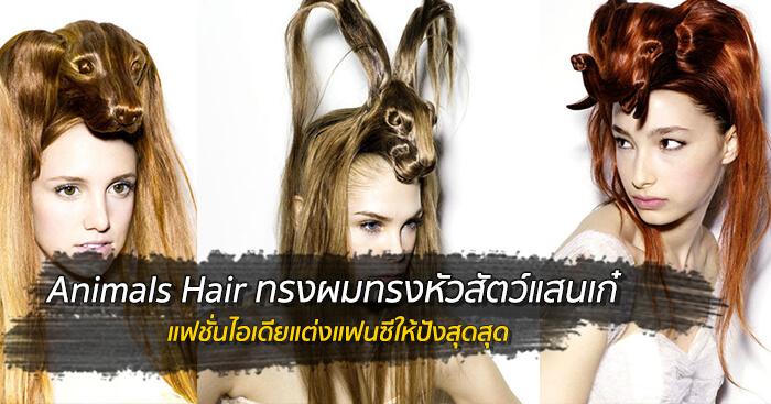 Animals Hair ทรงผมทรงหัวสัตว์แสนเก๋ 13 - animals
