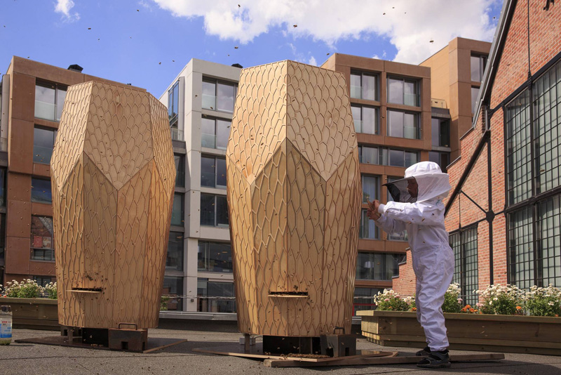 Vulkan Beehive สร้างสรรค์บ้านไม้ให้กับผึ้งกว่า 160,000 ตัว 2 - Architecture