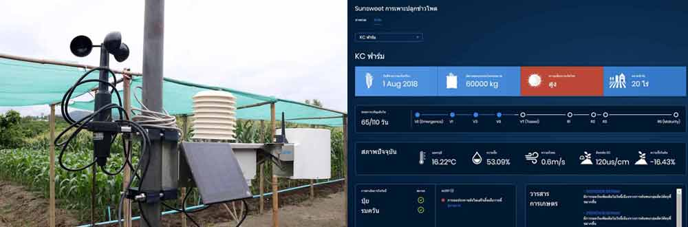ล็อกซเล่ย์ ลุยสมาร์ทฟาร์มมิ่ง ชูเทคโนโลยี IOT Sensors เพื่อการเกษตรแห่งอนาคต