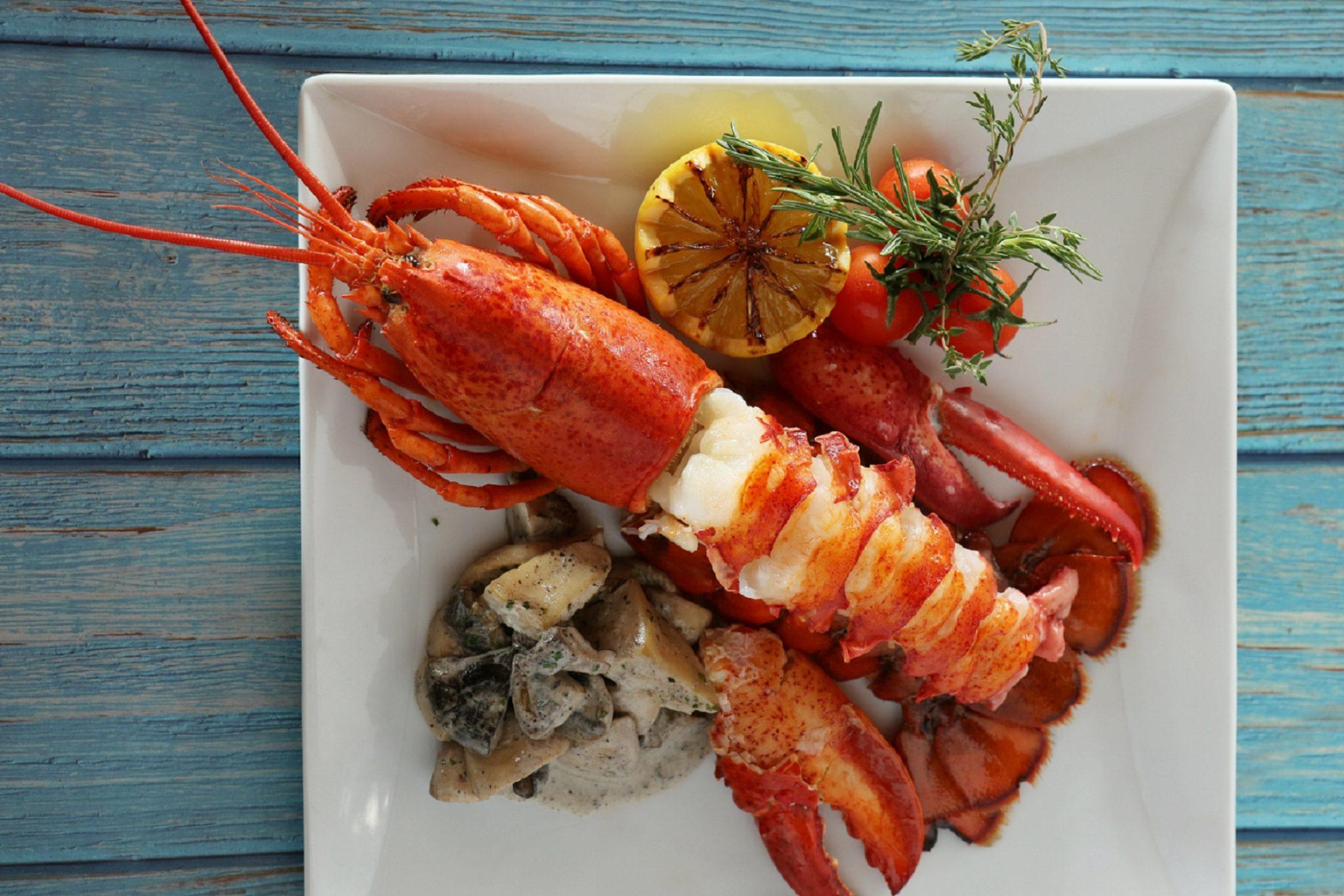 ล็อบสเตอร์เนื้อแน่นพร้อมเสิร์ฟจากทะเล ณ ห้องอาหารจิออร์จิโอ 13 -