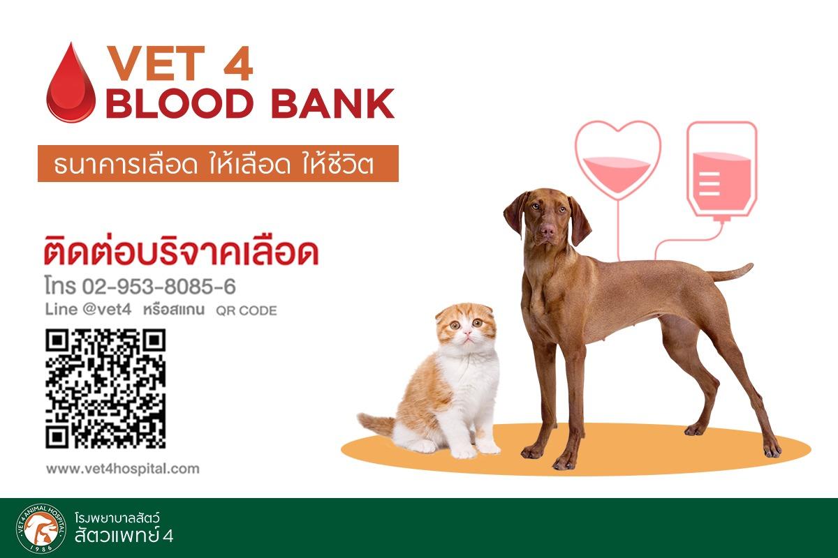 VET 4 BLOOD BANK ธนาคารเลือด ให้เลือด ให้ชีวิต 13 -